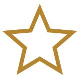 Star Bullet Point